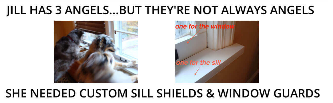 Sill Shield And Door Shields Protect